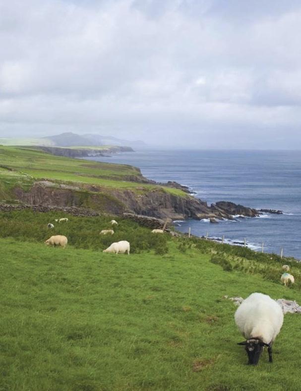 Global Warming Impact Zones   Ireland